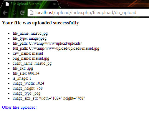 CodeIgniter File Upload Success